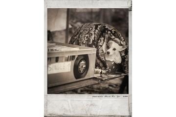 Polaroid, Berlin - Série Urban