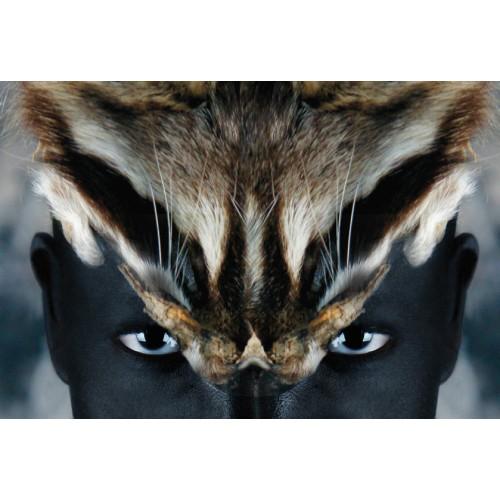 Série Africa - Sonja Animal 2